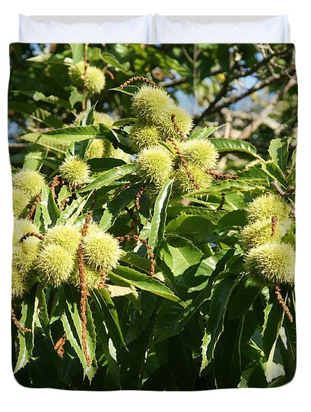Sweet Chestnut Duvet Cover