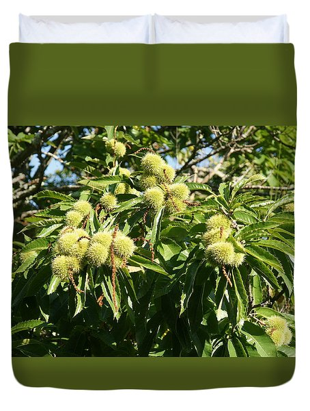 Duvet Cover featuring the photograph Sweet Chestnut by Christian Zesewitz
