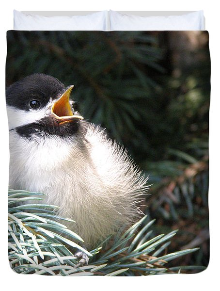 Sweet Chickadee Duvet Cover by Angie Rea
