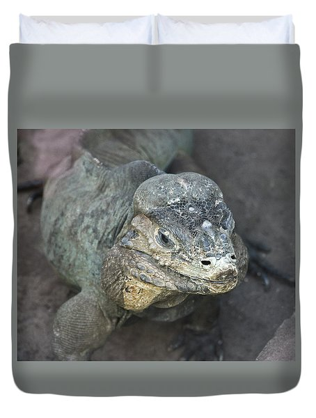 Duvet Cover featuring the photograph Sweet Face Of Rhinoceros Iguana by Miroslava Jurcik