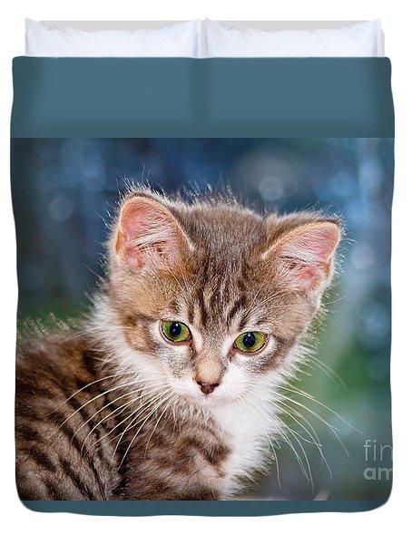 Sweet Kitten Duvet Cover