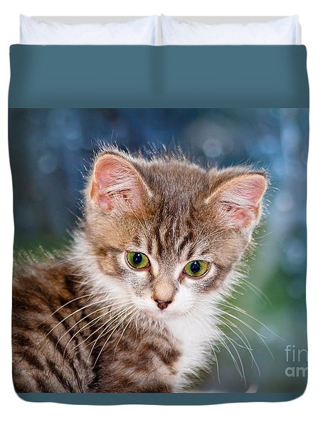 Sweet Kitten Duvet Cover