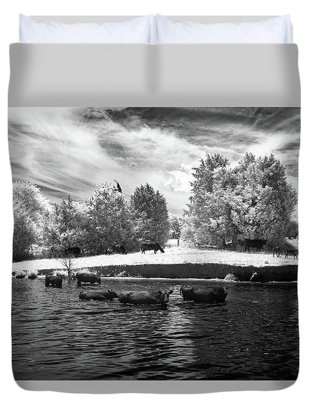 Swimming With Cows II Duvet Cover by Paul Seymour