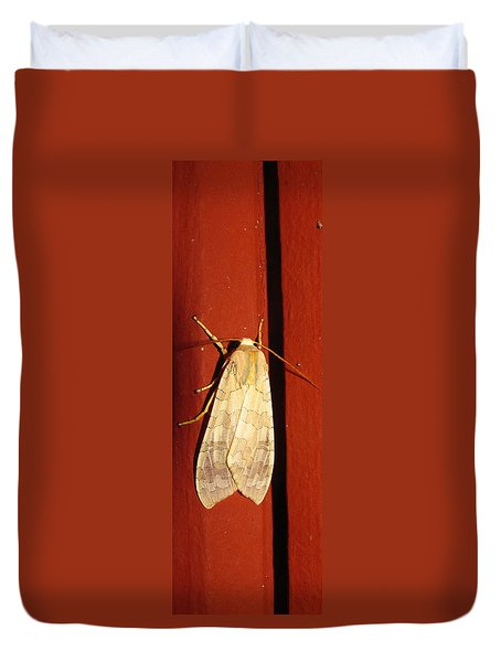 Sycamore Tussock Moth Duvet Cover