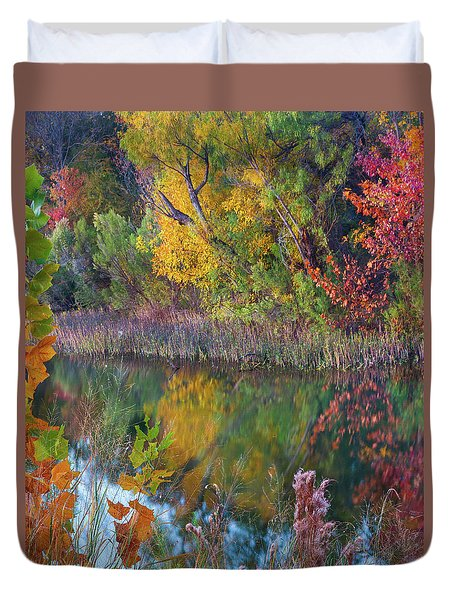 Sycamores And Willows Duvet Cover by Tim Fitzharris