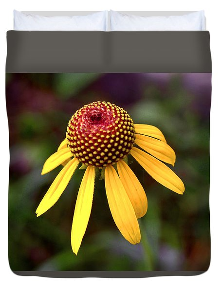 Symmetry Of Nature 015 Duvet Cover by George Bostian