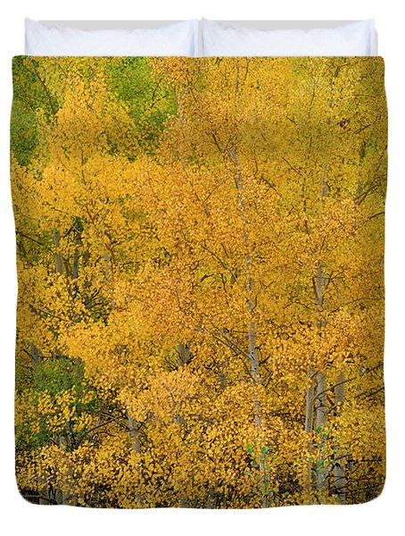 Duvet Cover featuring the photograph Symphony In Gold by Ron Cline