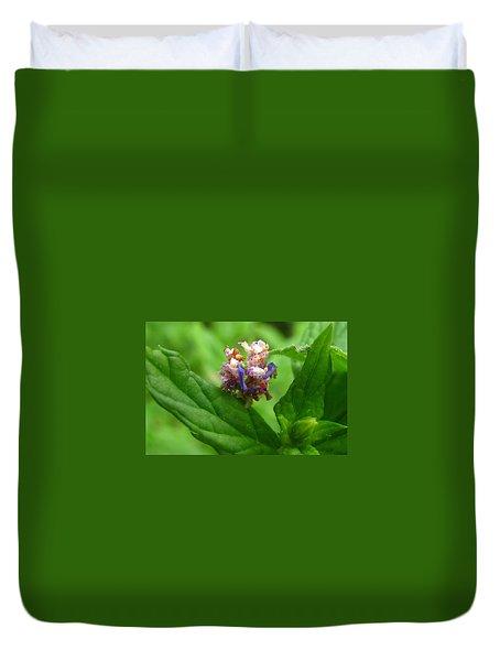 Synchlora Aerata Caterpillar Duvet Cover