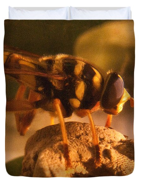 Syrphid Fly On Fossil Crinoid Duvet Cover