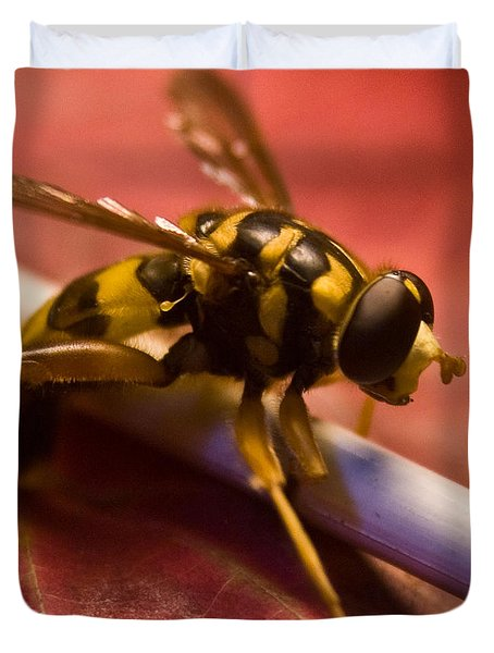 Syrphid Fly Poised Duvet Cover