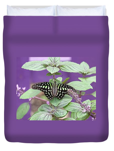 Tailed Jay Butterfly In Puple Duvet Cover