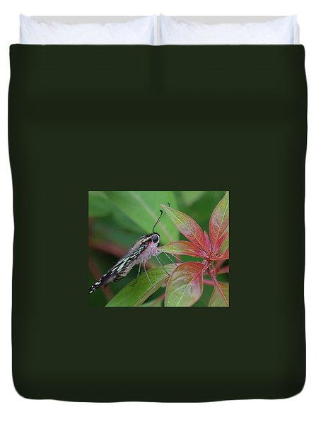 Tailed Jay Butterfly Macro Shot Duvet Cover