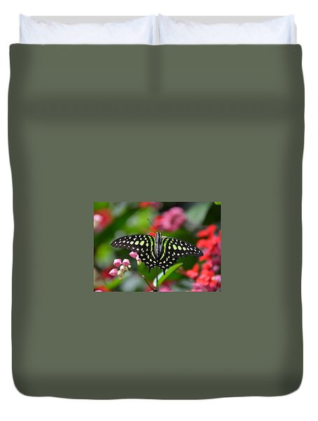 Tailed Jay4 Duvet Cover by Ronda Ryan