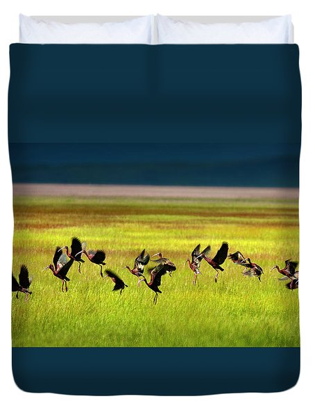 Take Off Duvet Cover