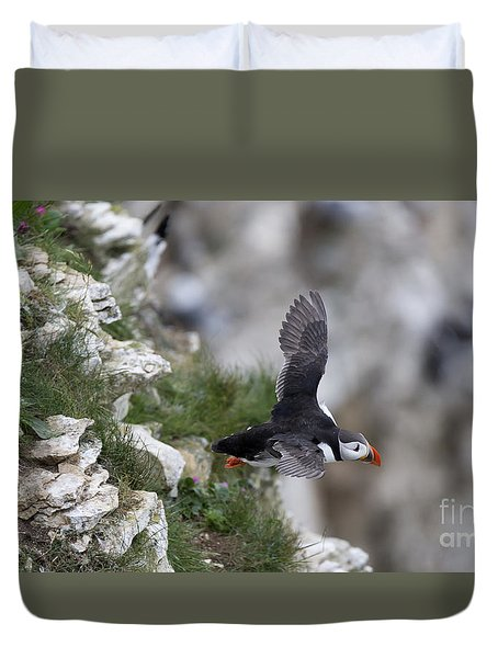 Taking Off Duvet Cover by David  Hollingworth