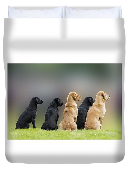 Talented Labradors Duvet Cover