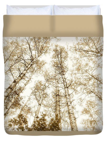 Duvet Cover featuring the photograph Tall Aspens by Elena Elisseeva