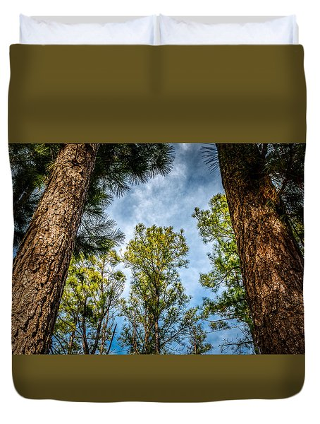 Tall Pines Duvet Cover by Doug Long