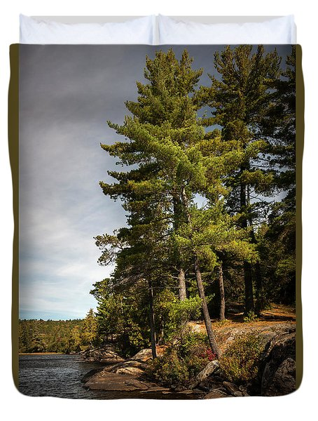 Duvet Cover featuring the photograph Tall Pines On Lake Shore by Elena Elisseeva