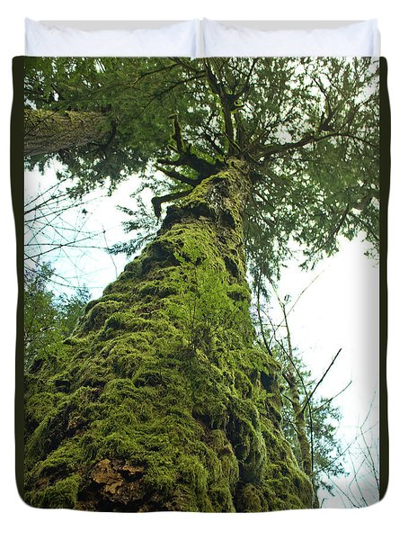 Tall Tall Tree Duvet Cover