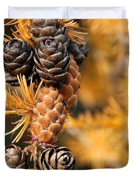 Tamarack Larch Tree In The Fall  Duvet Cover