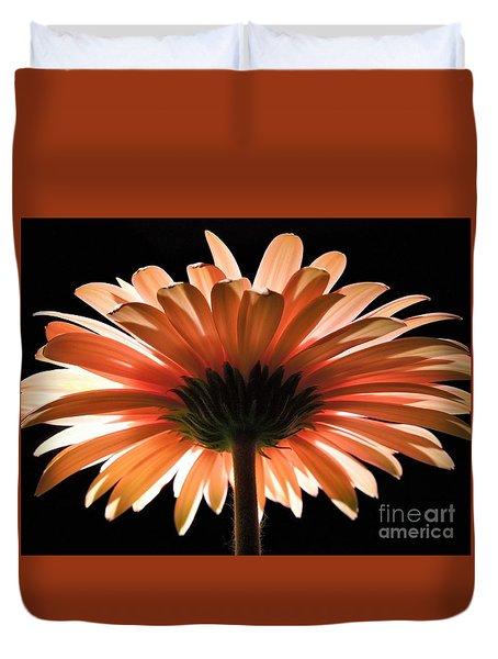 Tangerine Gerber Daisy Duvet Cover