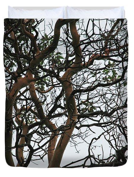 Tangled Web Tree Duvet Cover by Carol  Eliassen
