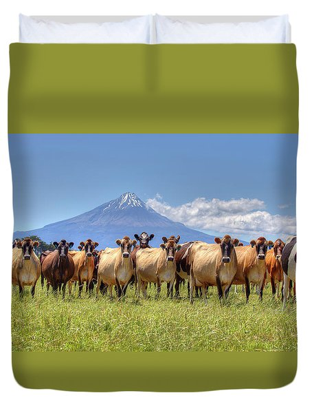 Taranaki Cows Duvet Cover