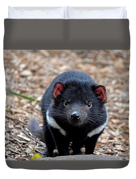 Tasmanian Devil Duvet Cover