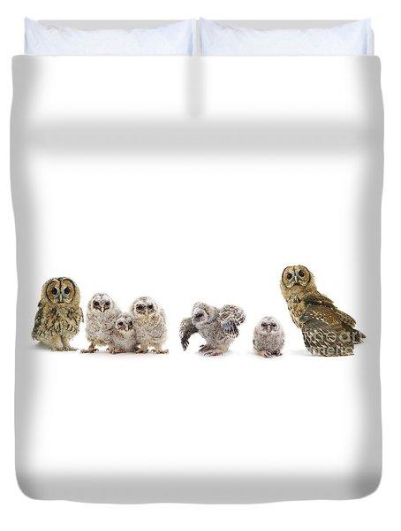 Tawny Owl Family Duvet Cover