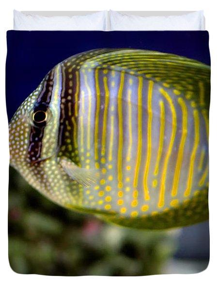 Technicolor Fish Duvet Cover by Madeline Ellis