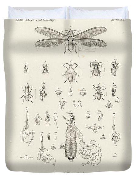 Termites, Macrotermes Bellicosus Duvet Cover