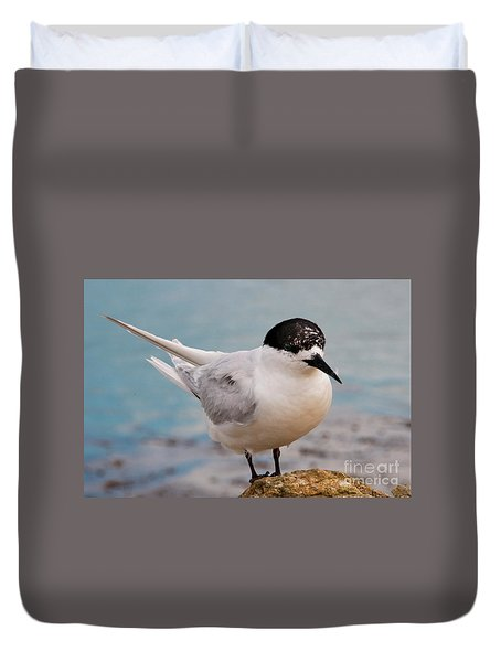 Duvet Cover featuring the photograph Tern 1 by Werner Padarin