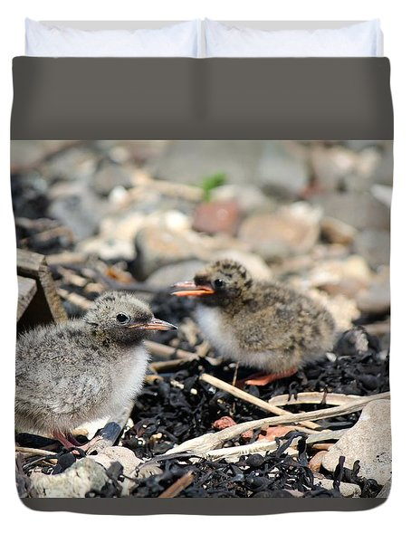 Tern Chicks Duvet Cover
