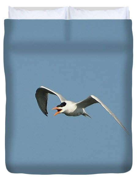 Tern Flight 02 Duvet Cover by Al Powell Photography USA