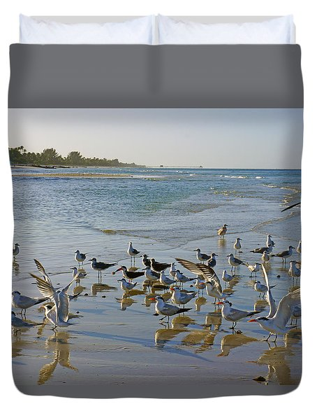 Terns And Seagulls On The Beach In Naples, Fl Duvet Cover