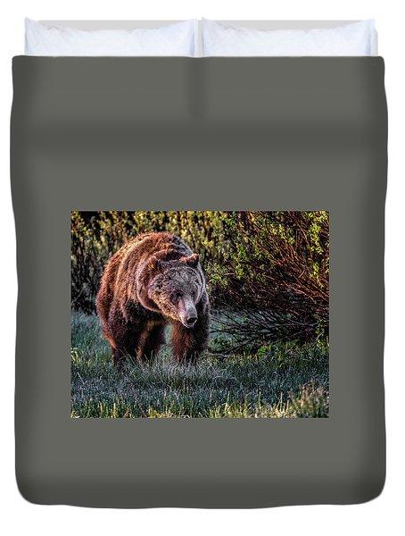 Teton Grizzly Duvet Cover