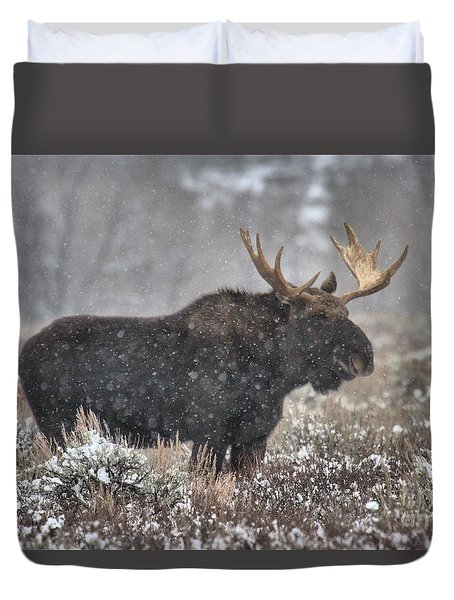 Duvet Cover featuring the photograph Teton Snowy Moose by Adam Jewell