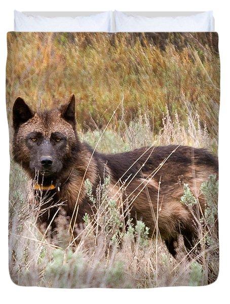Teton Wolf Duvet Cover