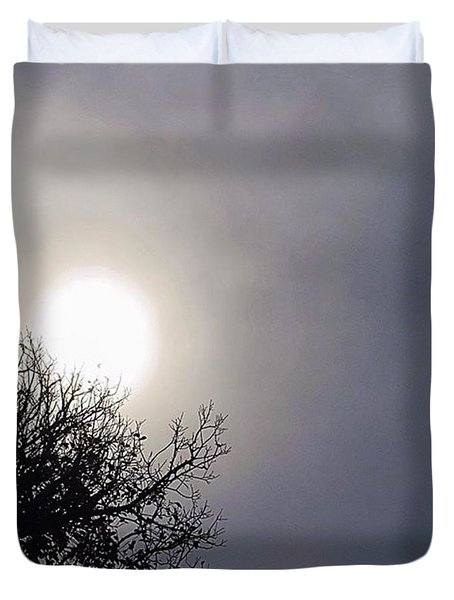 #texas Blue #sky, Where Have You Been Duvet Cover by Austin Tuxedo Cat