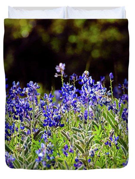 Texas Bluebonnets IIi Duvet Cover