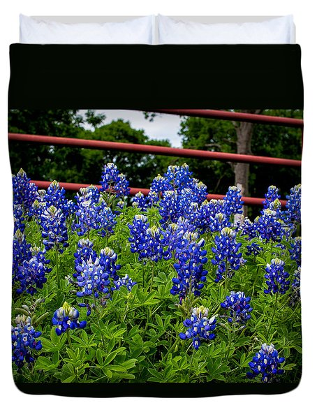 Texas Bluebonnets In Ennis Duvet Cover