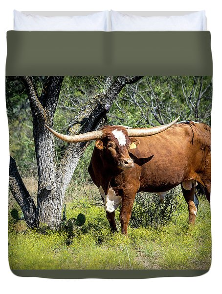 Texas Longhorn Steer Duvet Cover