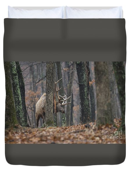 Duvet Cover featuring the photograph That's The Spot by Andrea Silies