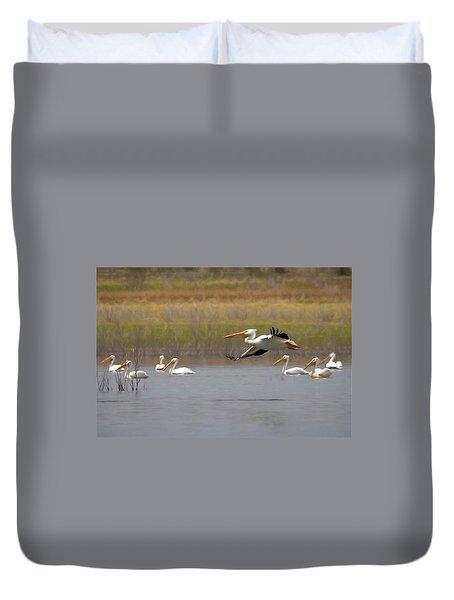 The American White Pelicans Duvet Cover by Ernie Echols