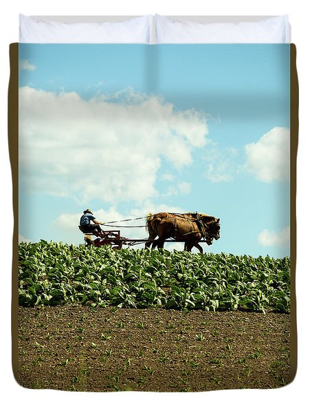 The Amish Farmer With Horses In Tobacco Field Duvet Cover