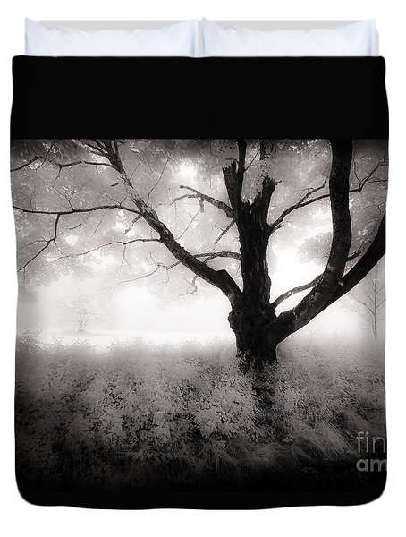 Duvet Cover featuring the photograph The Ancient Tree by Craig J Satterlee