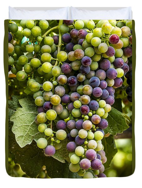 The Art Of Wine Grapes Duvet Cover by Teri Virbickis