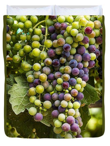 The Art Of Wine Grapes Duvet Cover