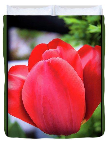 The Tulip Beauty Duvet Cover